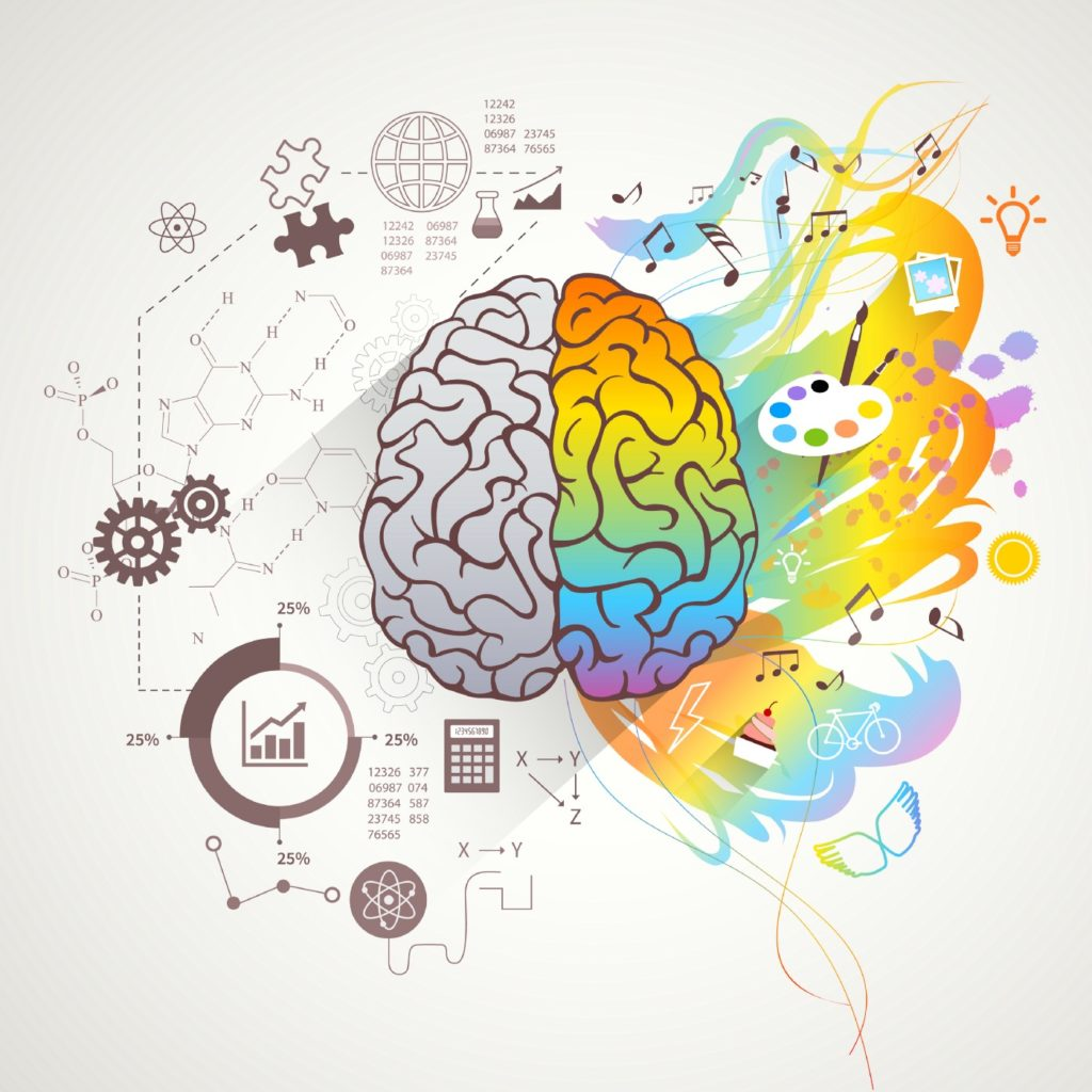 An illustration of the human brain, with analytical diagrams on the left side, and rainbow-coloured art items on the right.